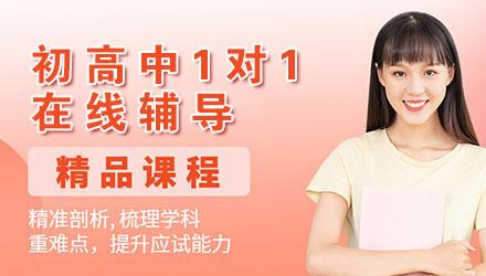 北京初高中1对1在线辅导培训