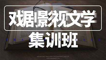 西安戏剧影视文学集训班培训