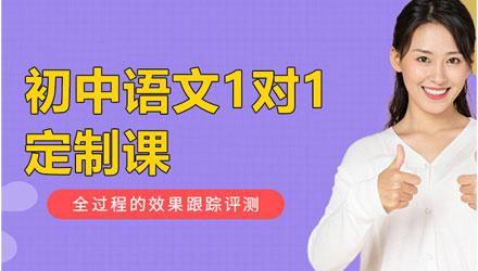 成都初中语文1对1定制课