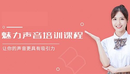 武汉声音培训-可以使一位普通的女士看上去很有魅力。