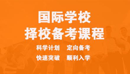 上海国际化学校备考