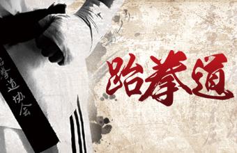 南宁英豪跆拳道培训