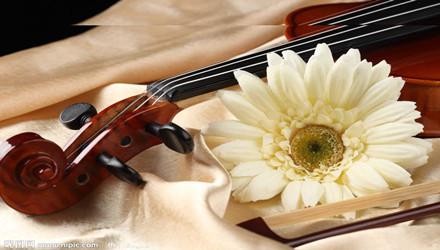 南宁卓丹艺小提琴培训
