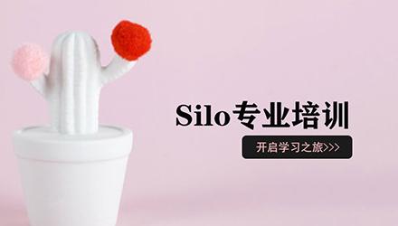 宁波Silo培训