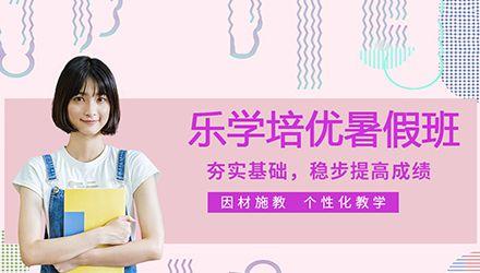 天津中小学暑假班培训