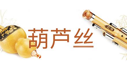 北京葫芦丝培训