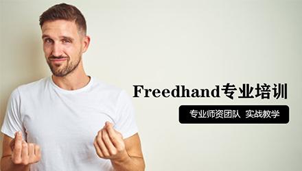 宁波Freedhand培训
