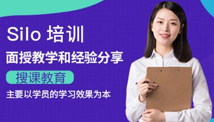 揭阳Silo软件培训