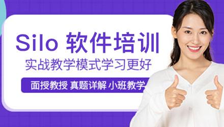 潮州Silo软件培训