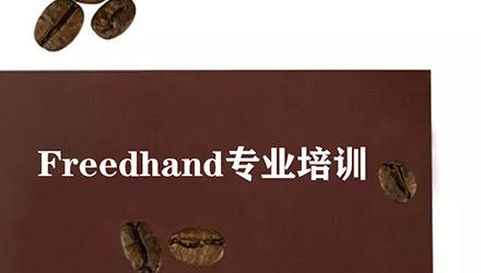 温州Freedhand培训