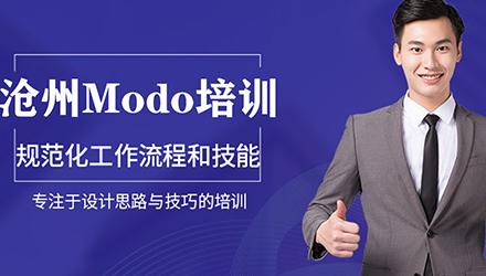 沧州Modo培训