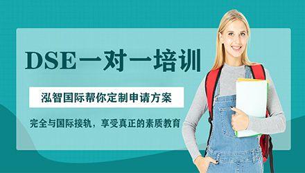 深圳DSE一对一培训