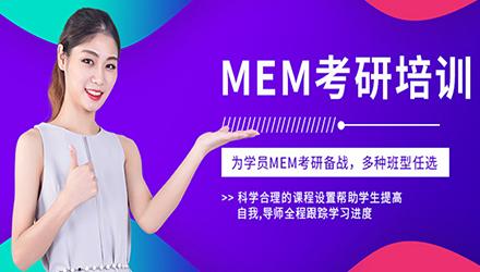 上海钻石卡高端辅导课程(MEM)