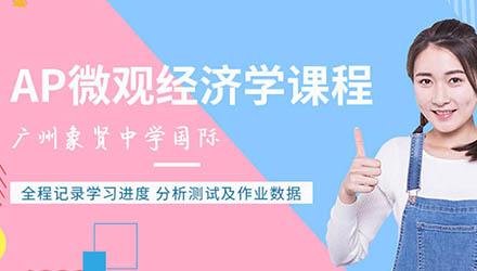广州AP微观经济学课程辅导